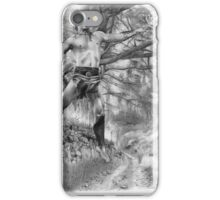 Ancient Celtic Warrior iPhone Case/Skin