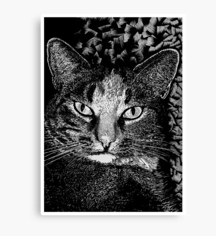 Blink! Canvas Print