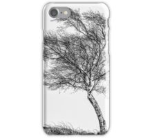 Facing the Elements iPhone Case/Skin