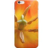 Lily-flowered Tulip iPhone Case/Skin