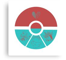 Pokemon Heart Broken starter Canvas Print