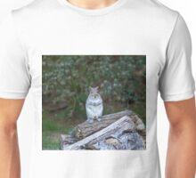 Grey Squirrel upright Unisex T-Shirt