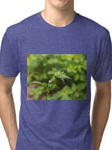 Astrantia Garden Flower Tri-blend T-Shirt