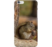Breakfast of Champions - Grand Tetons iPhone Case/Skin