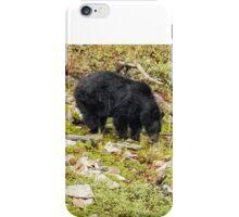 Busy Black Bear - Glacier NP iPhone Case/Skin