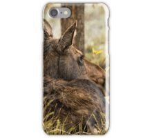 Waiting out the Rain - Moose - Grand Tetons iPhone Case/Skin