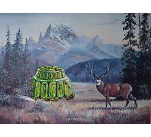 Boreal Jello Mold with Buck Photographic Print