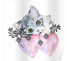 kitten and heart   Poster