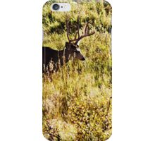 Deer 3 iPhone Case/Skin