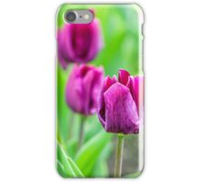 Purple Bud Of Tulips iPhone Case/Skin