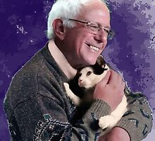 Cats and Bernie by fatmah1960