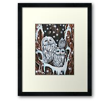 Winter's Home Framed Print