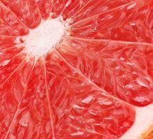 Half of pink grapefruit Sticker