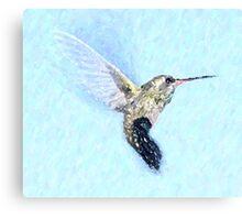 Flying Hummingbird - Shades of Blue Canvas Print