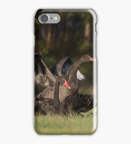 Swan Learning iPhone Case/Skin