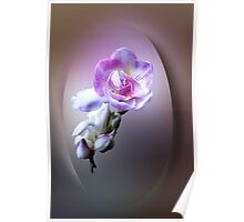 pink freesia flower Poster