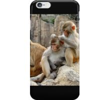 Macaques  iPhone Case/Skin