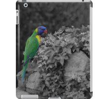 Rainbow Lorikeet sc iPad Case/Skin