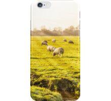 Rural landscape in Holland iPhone Case/Skin