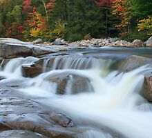 Lower Falls, Swift River, Kancamagus Highway, White Mountain National Forest, New Hampshire by Daniel Arthur Brown