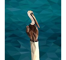 Low Poly Pelican Photographic Print