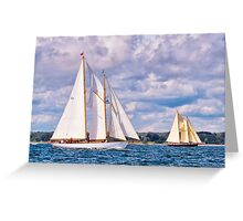 Skirting The Coast Greeting Card