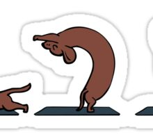Dachshund yoga Sticker