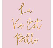 La Vie Est Belle (Pink) Photographic Print