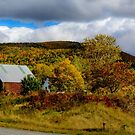 Countryside in Mabou by kenmo