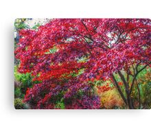 Colours of Nature Canvas Print