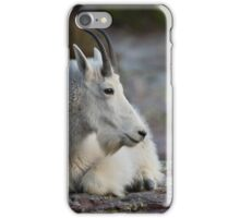Mountain Goat Watching the Sunset iPhone Case/Skin