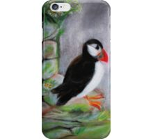 Puffin. Pastel Drawing. iPhone Case/Skin