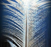 Spirit Feather by TruDesigns