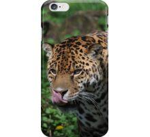 jaguar iPhone Case/Skin