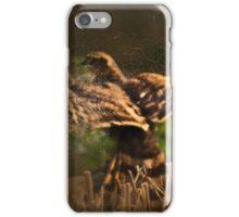 Vintage hawk - image 2 iPhone Case/Skin