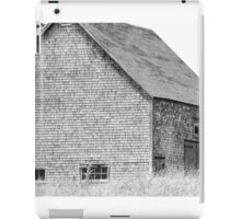 Oceanside Barn iPad Case/Skin