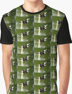 Widow Skimmer Dragonfly  Graphic T-Shirt