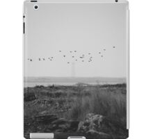 Cape Sable Birds iPad Case/Skin