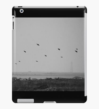 Cable Sable Island Birds iPad Case/Skin