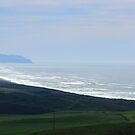 Coastline by Laurie Puglia