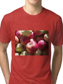 Harvest Apples Tri-blend T-Shirt
