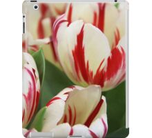 White and Red Tulips iPad Case/Skin