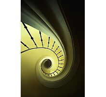 Green and yellow spirals Photographic Print
