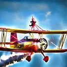 Romance Of The Airshow by Noble Upchurch