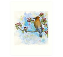 Cedar Waxwing Watercolor Art Print