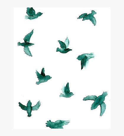 Jade Birds Photographic Print