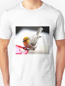 VERDIN SONG BIRD ON HUMMINGBIRD PERCH T-Shirt