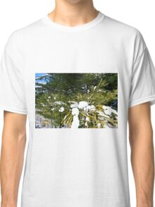 Snow Covered Pine Classic T-Shirt