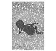 Bee script silhouette Photographic Print
