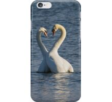 Swan Love iPhone Case/Skin